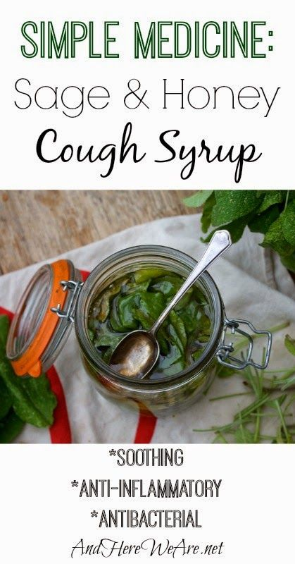 Sage and Honey Cough Syrup Recipe