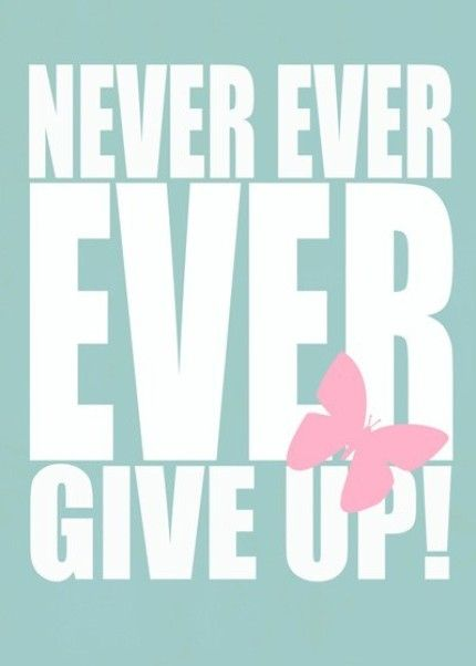 NEVER EVER EVER GIVE UP!