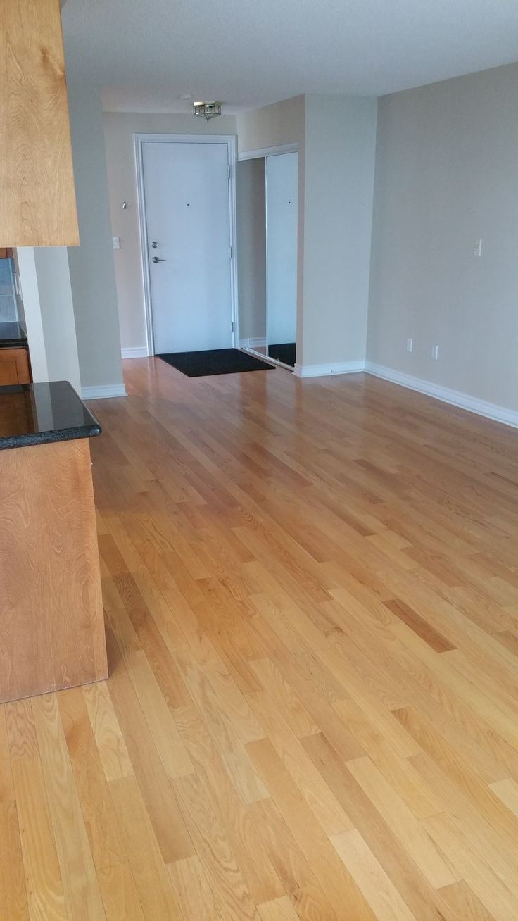 Basement Apartment For Rent Yonge And Lawrence