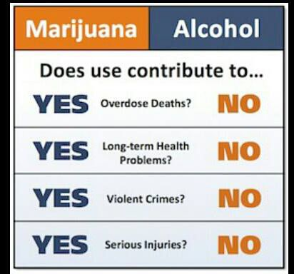 what medical marijuana can contribute to Whether or not the idea turns out to be scientifically valid — or to contribute to the effectiveness of epidiolex — the drug's approval, jikomes say, could not only soften attitudes about medical marijuana, but could also motivate politicians and other policymakers to update their viewpoints to reflect public opinion.