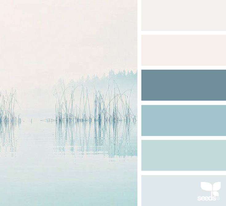 { serene hues } image via: @in_somnia_  ... #palette #colorpalette #pallet #colour #colourpalette #design #seeds #designseeds #seedscolor
