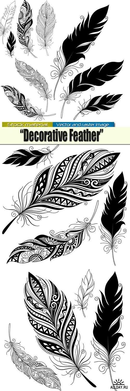 Изысканные Декоративные перья в Векторе