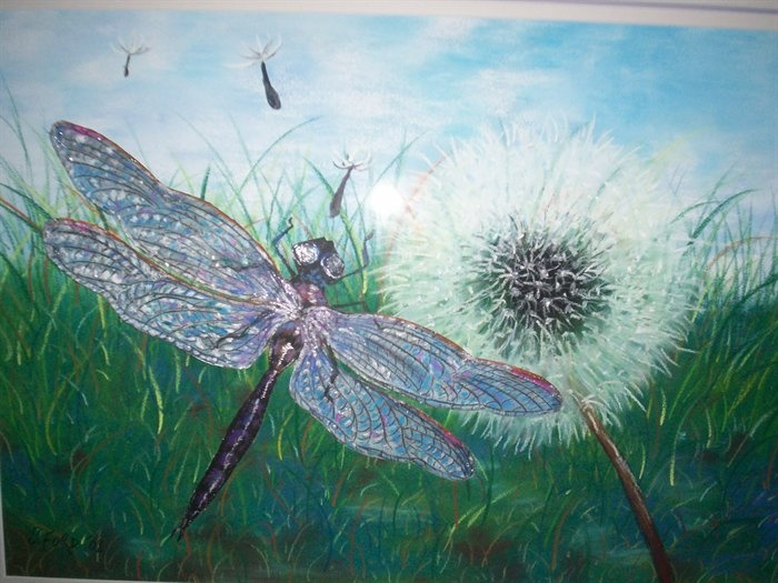 Dragonfly Summer  © Sally Ford