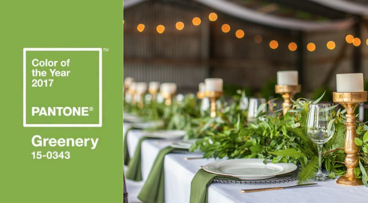 Lush table runners with cascading foliage are the perfect way to incorporate this #green into your wedding or event tablescape. For a natural look, match #greenery with mahogany tiffany chairs and  accents of eye catching gold. This setting was created in the rustic barn of Glenrock Farm, a Gold Coast wedding and event venue.  You can read more about this venue here.  Image credit:  Life in Bloom Photography