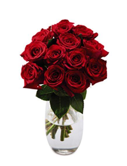 A Dozen Premium Red Roses #AldiWishList