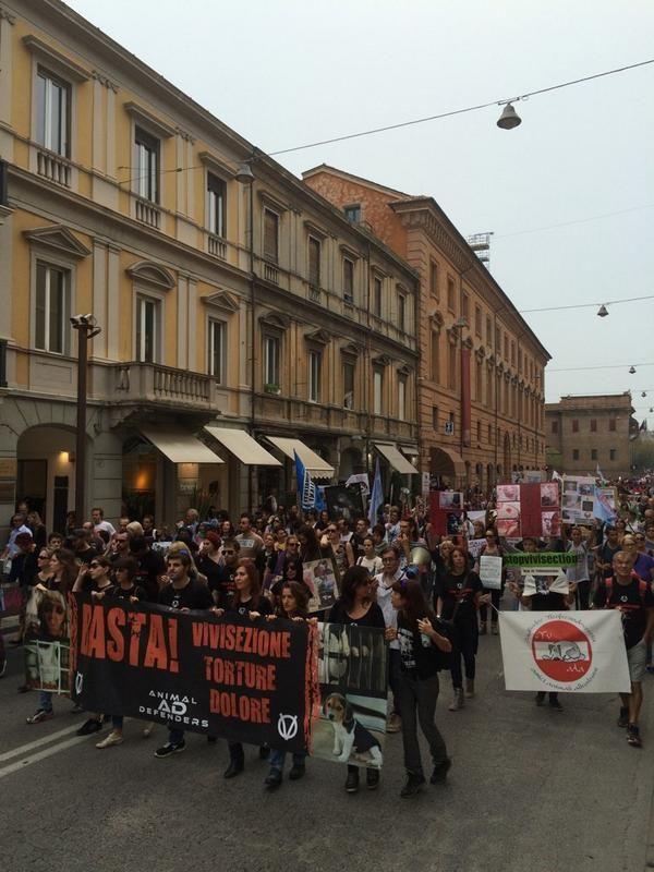 """La Nuova #Ferrara """"In mille contro Unife, sperimentazione animale e vivisezione. Corteo verso piazza Ariostea #NOstabularioFerrara """""""