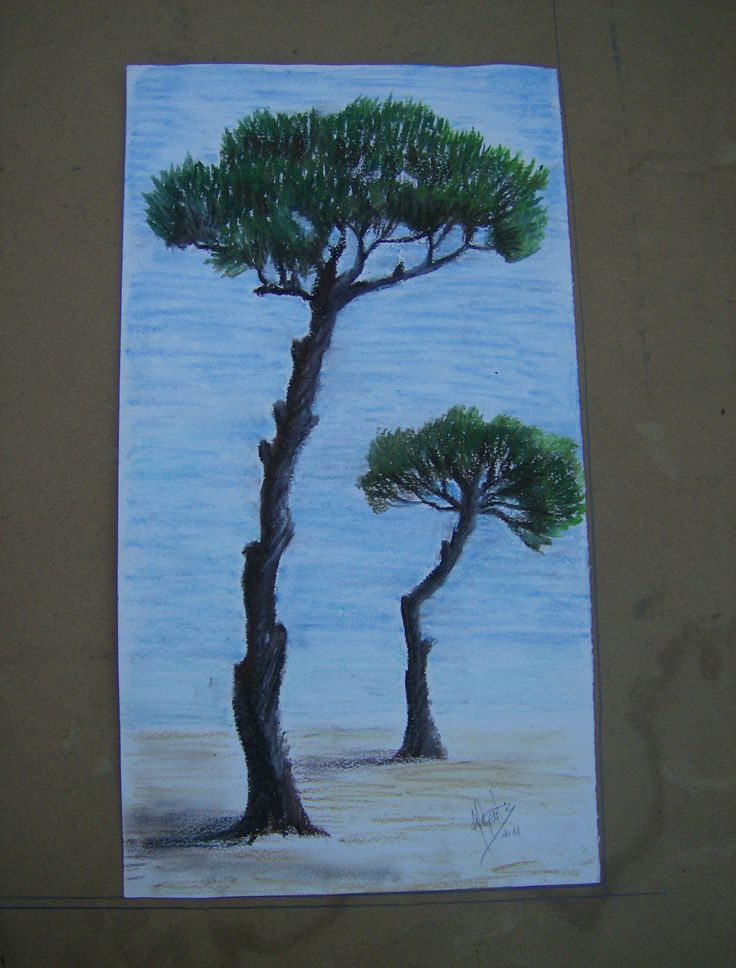 My pinetree ..... Painted on my sister request.....