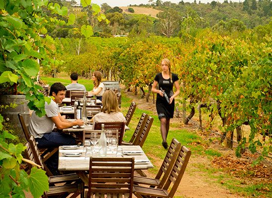 Discover #food and #wine in #South #Australia with #Driveaway