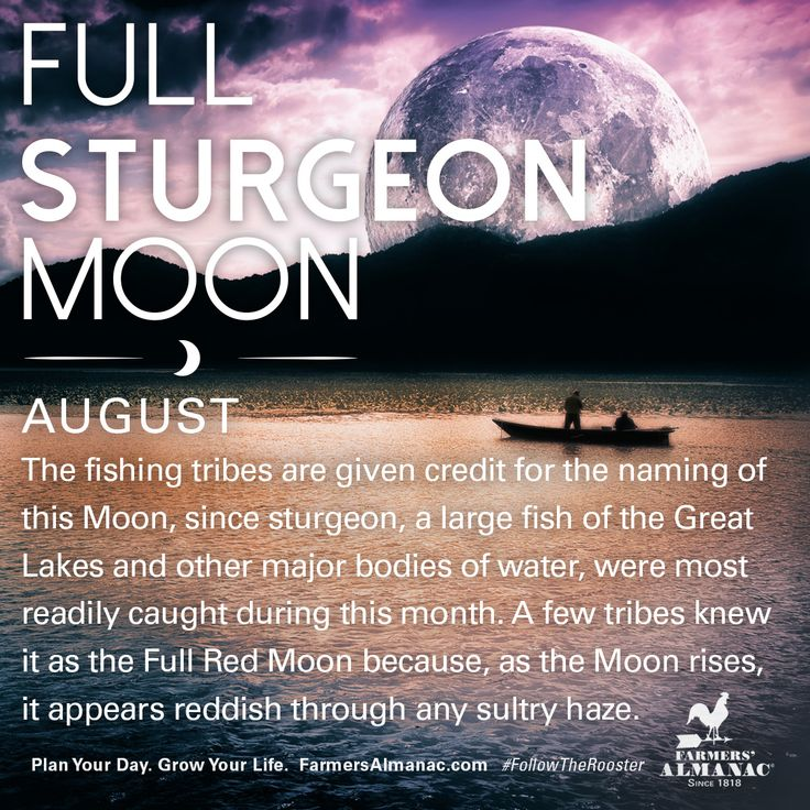 August's full Moon, like other full Moons, is rich in folklore and therefore was given many names. Watch our short video to learn the origin behind this full Moon's names: https://www.farmersalmanac.com/augusts-full-sturgeon-moon-17653 #fullmoon #folklore #legends #NativeAmerican #astronomy #stargazing