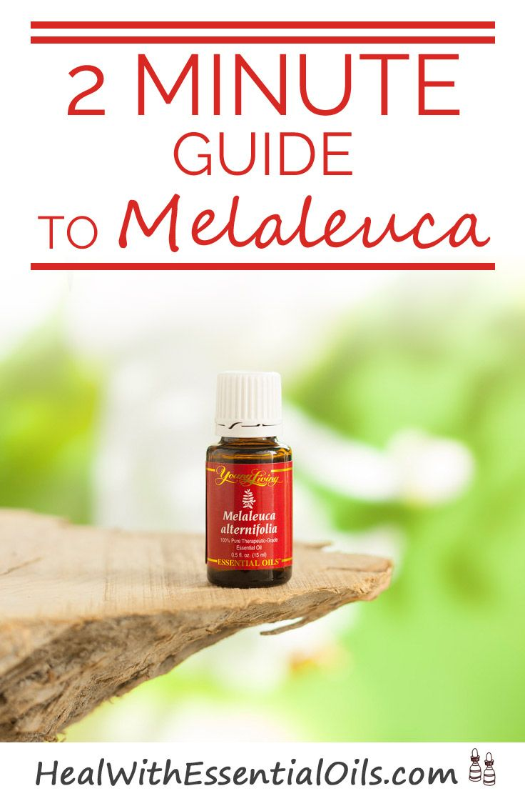Melaleuca Wellness Guide 14th Edition
