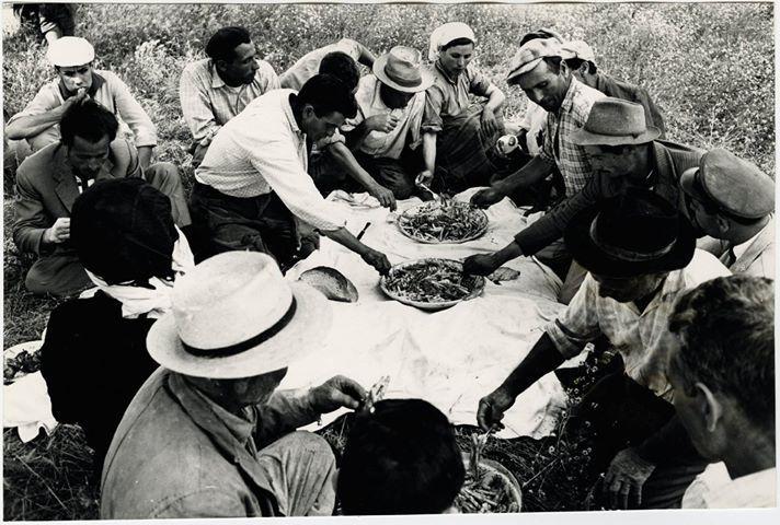 l pranzo collettivo durante la mietitura a San Giorgio Lucano (1965)  Lo scambio di aiuto reciproco nei lavori tra le famiglie contadine rappresentava uno dei più importanti aspetti sociali e non poteva mancare il momento della socialità e del convivio per le squadre di lavoratori e le loro famiglie.