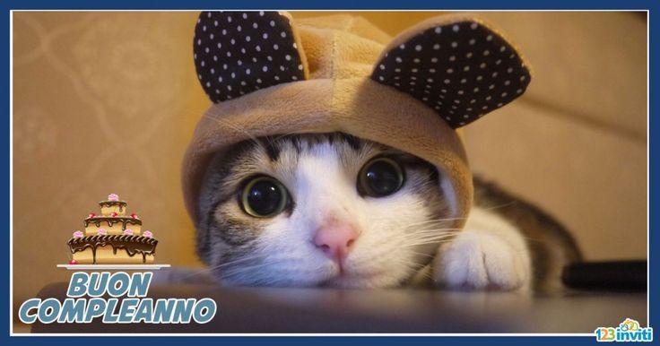 Conosciuto cartoline-compleanno-con-gatti-1 | auguri | Pinterest | Cartoline  FG13