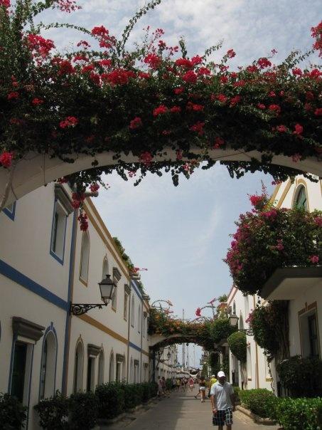 Little Venice: Gran Canaria