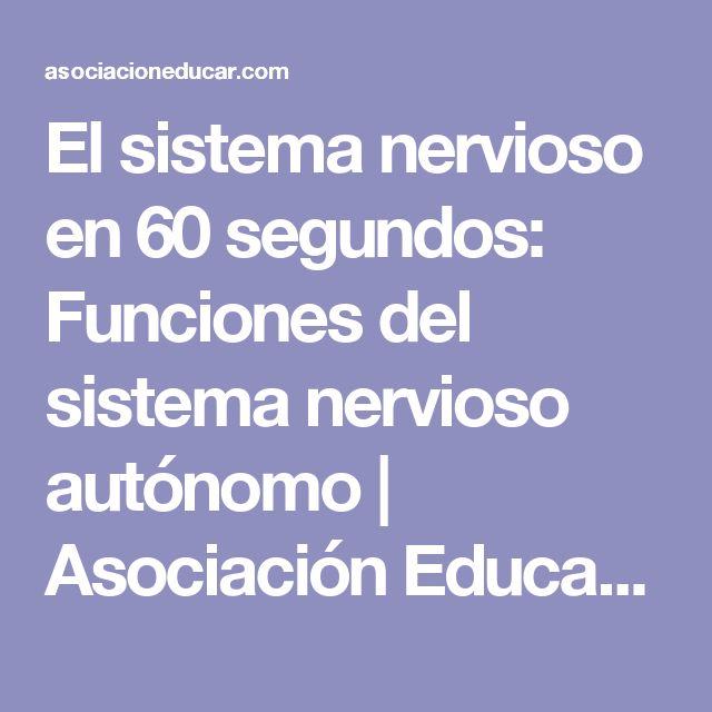 El sistema nervioso en 60 segundos: Funciones del sistema nervioso autónomo | Asociación Educar para el Desarrollo Humano