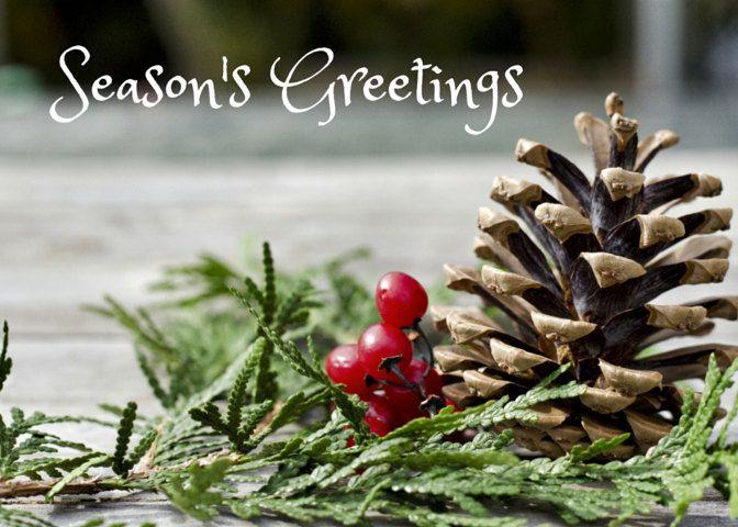 Seasons Greetings Photo Greeting Card, 4x5 christmas cards, blank inside, merry…