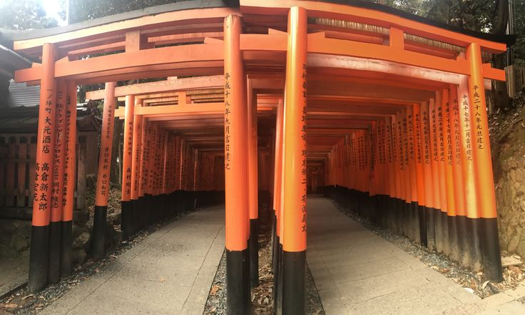 Fushimi Inari Shrine is famous for its thousands of Torii gates in southern Kyoto. It leads hikers up the 233 meter mountain where tourist can see beautiful nature and traditional heritage.
