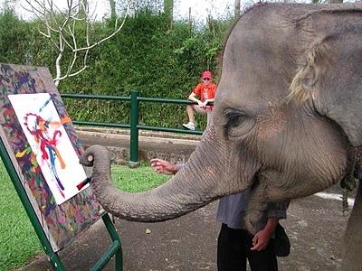 Elephant Safari Park, Ubud Bali. Painting elephants that take you on a ride- YES!!