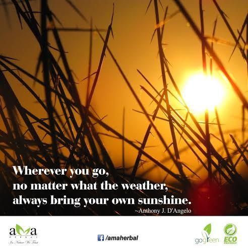 """#Quoteoftheday: """"Wherever you go, no matter what the weather, always bring your own sunshine.""""  ~ Anthony J.D'Angelo Stay with us and protect #environment. www.amaherbal.com #EcoFriendly #InspirationalQuotes #Quotes #livegreen #GoGreen #Photooftheday #Picoftheday #naturelovers #landscape #mothernature#picture #perfectday #beauty #nature #lovenature #photo #discover"""