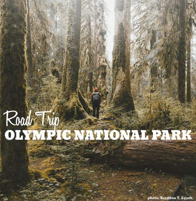 """""""Road Trip Olympic National Park"""""""