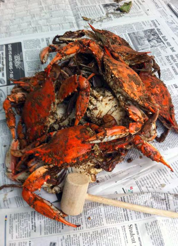 Steamed blue crabs recipe. Certain dishes are a rite of passage.