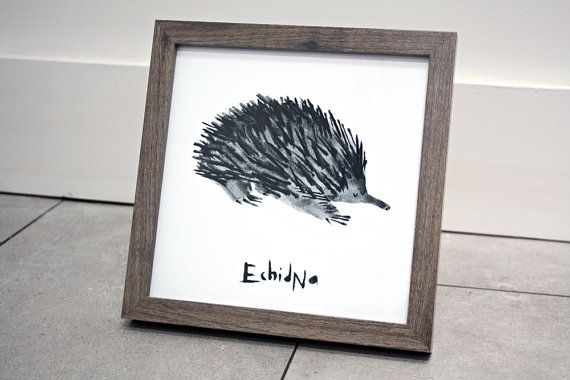 SQUARE Echidna Giclee PRINT - by AnniesPrintings