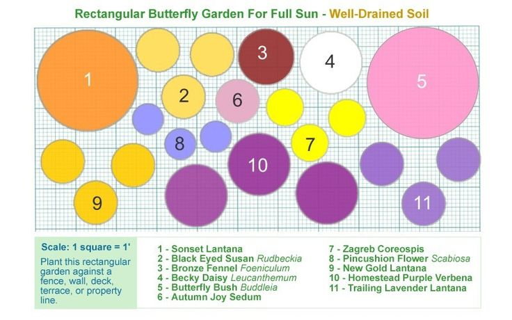 Butterfly Flower Garden Plans | 20 scale 1 square 1 to print design right click on picture of design ...