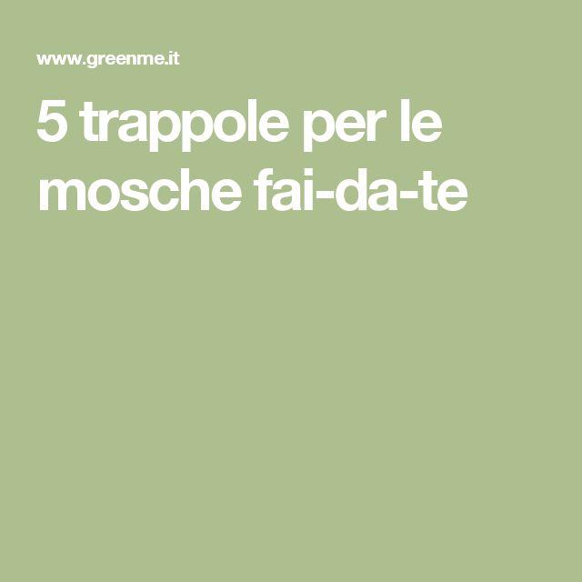 5 trappole per le mosche fai-da-te