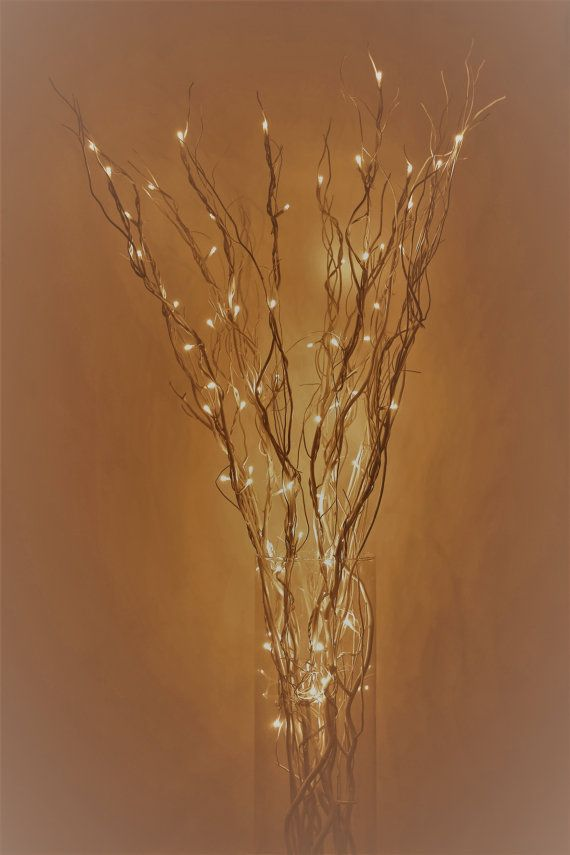 *********LED Lighted Curly Willow Branches*********** (It takes two bundles of lighted branches to make the picture ) The 24 tall bundle has 4 branches wrapped with one continuous string of 40 led fairy lights they are battery operated the base is about 3 inches and the top spread is between 6 to 8. Requires 3 x AA batteries (Not included) (Vase is not included) The 36 tall bundle has 4 branches wrapped with one continuous string of 50 led fairy lights they are battery operated the base is…