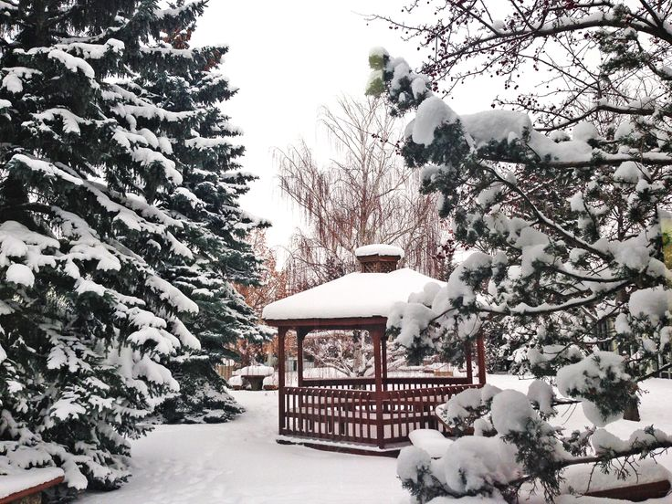 Winter wonderland at #NAIT. #yeg #Edmonton #snow #yegwx