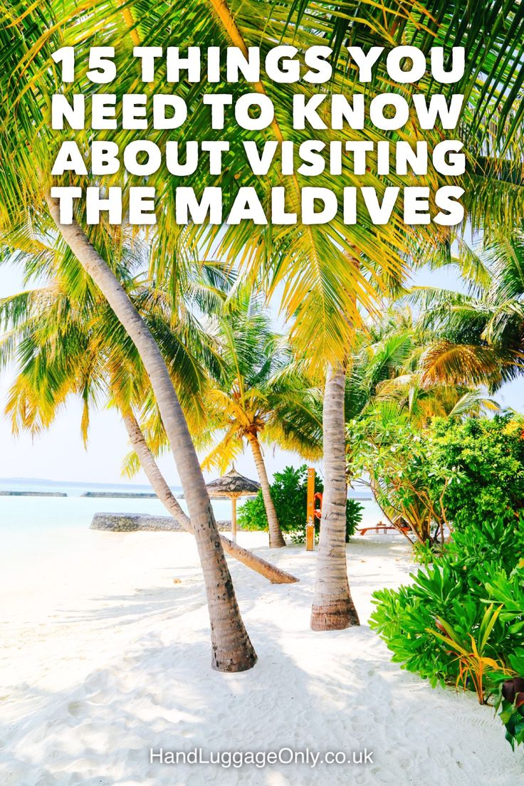 15 Things You Need To Know About Visiting The Maldives