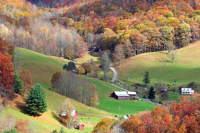 Maggie Valley, North Carolina.   Oh how I love this place.