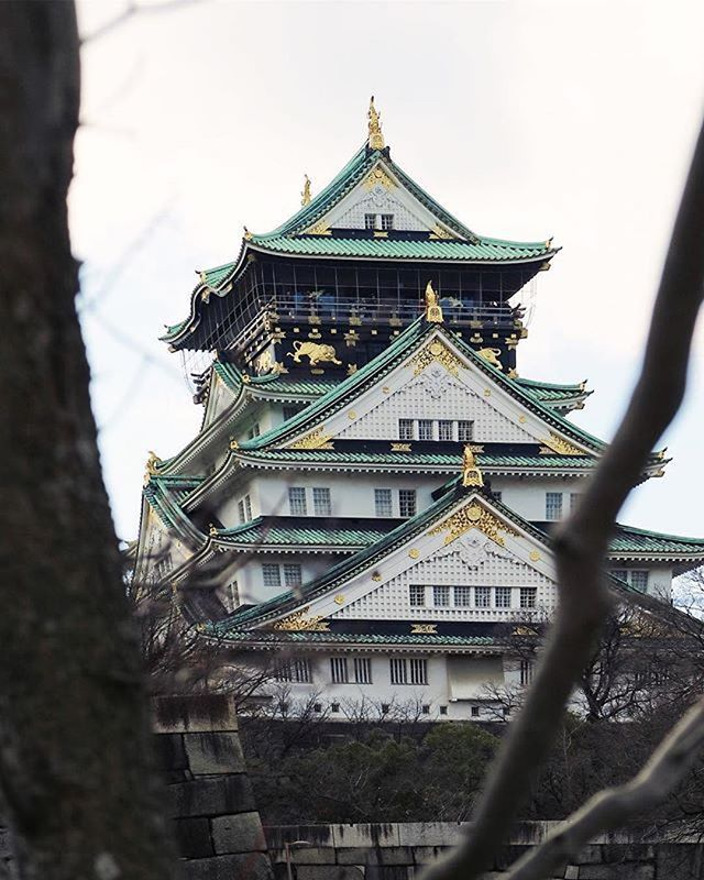 📷 by @levina_l ・・・ #KTF2017 #ExploreMoreKTF2017 ㅡ Travel More, Explore More ㅡ #wisatakota . Menjelajahi negeri yang memiliki adat tradisi budaya yang masih kental dengan segala aspek kemoderenannya, juga kulinernya yang sangat memanjakan lidah adalah sebuah pengalaman hidup.  Ditambah pengalaman backpacker alias jalan sendiri bersama keluarga menjadi pengalaman yang tidak terlupakan. Tersesat dan lelah semuanya terbayar ketika Osaka Castle, salah satu warisan budaya Jepang yang fenomenal…