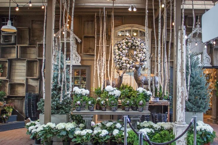 I know it's early... but Wonderland, Christmas Boutique is officially open today! It's absolutely beautiful this year... Link in bio for a look inside.⠀ #rogersgardens #bringingbeautyintoyourhomeandgarden #rgwonderland #christmas #decor #holiday #tistheseason #natural #nature #wonderland #boutique #instagood #beauty #love #style #rustic #chic #makersmovement
