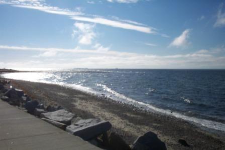 Davis Bay, somewhere to swim and sunbathe. #airnzsunshine