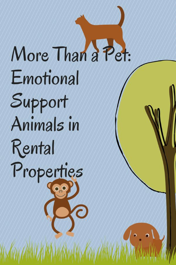 More Than a Pet: Emotional Support Animals in Rental Properties
