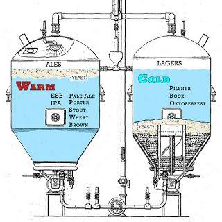 fermentación ale vs fermentacion lager