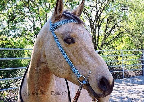 how to make a paracord horse halter