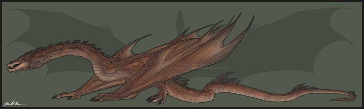 Smaug - Full Body Reference by sugarpoultry.deviantart.com on @DeviantArt