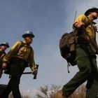 Forest Service Firefighter Salaries