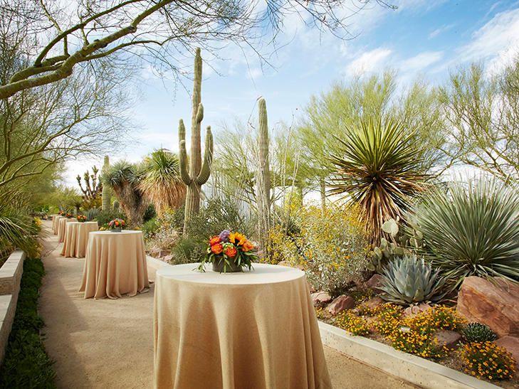 9 Unforgettable Las Vegas Wedding Venues | TheKnot.com