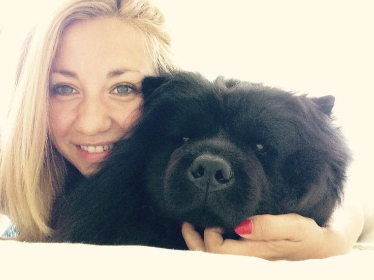 Queen/ chow chow