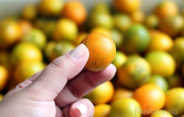 Para quem não conhece essa variedade de laranja, ela é bem miudinha, cerca de 5 cm de diâmetro. Acho um pouco amarga para consumir como fruta (tem que ame), mas na forma de compota, geleia ou em ca…