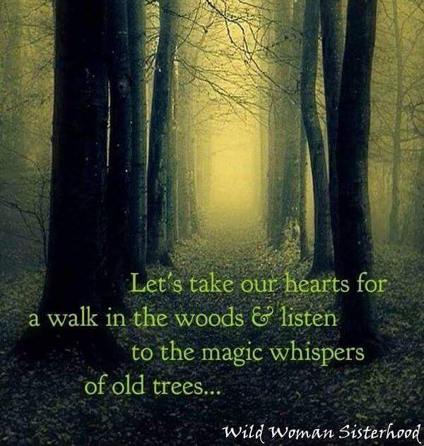 Let's do this and get lost...  WILD WOMAN SISTERHOOD  #motherearthisourteacher by wildwomansisterhoodofficial