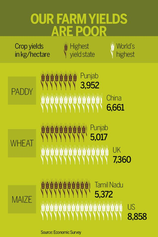 Even #India's best farming states are way behind #China, #UK and the #US