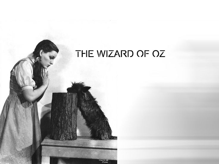 There's no place like home...Classic Movie, Thewizardofoz Wallpapers, Oz Hair, Fave Movie, Movie Wallpapers, Hair Style, Free Stuff, Wizards Of Oz, Movie Corner