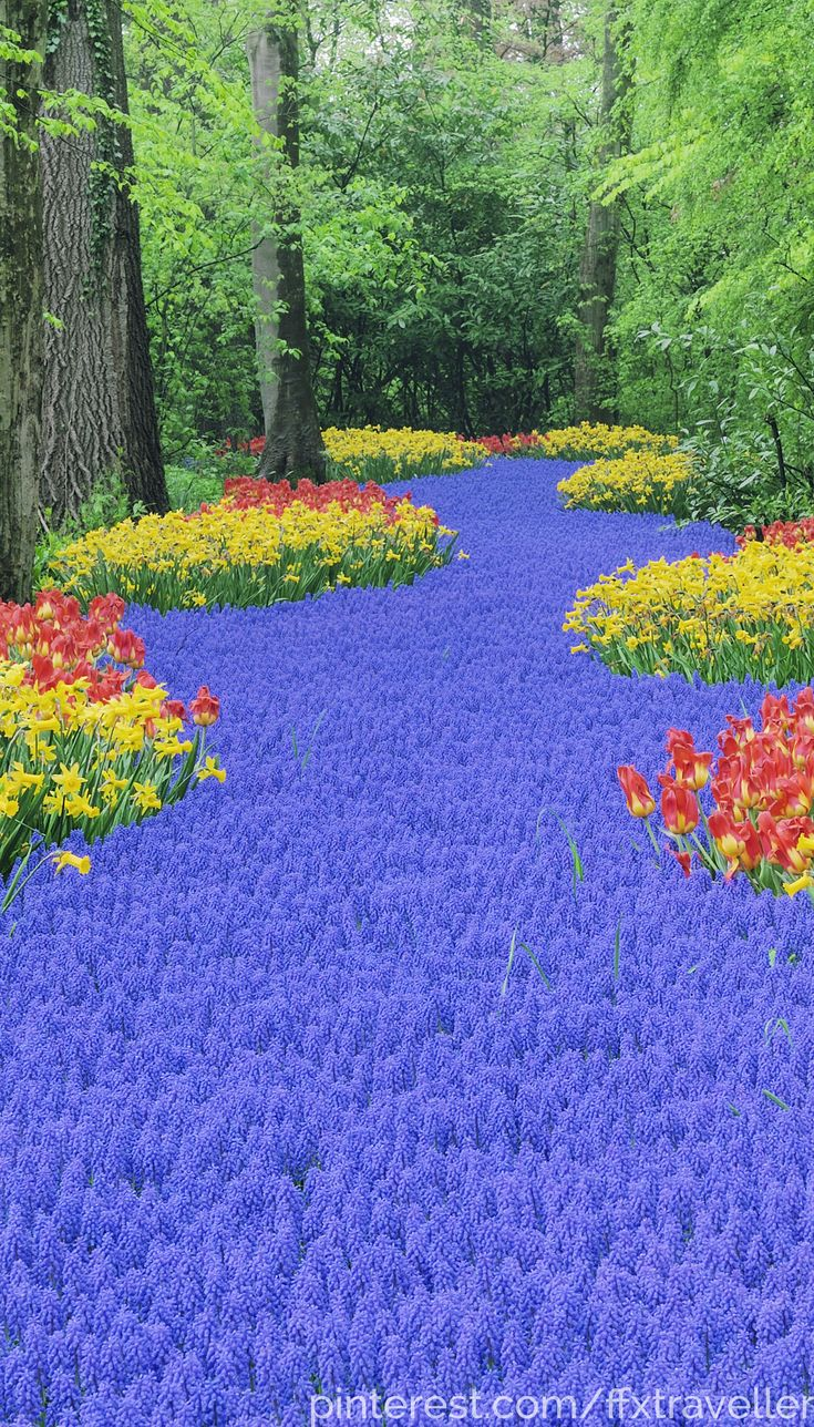 The world's 10 best springtime gardens! No country is more obsessed with tulips than the Netherlands. Keukenhof, Netherlands.