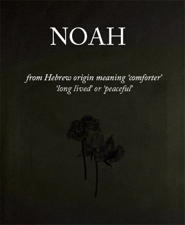 it's so great that Noah's name meaning is actually similar to who he is as a character without me realising.