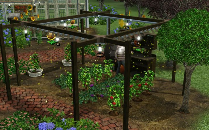 all glass greenhouse for sale - Google Search