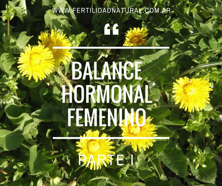 Balance hormonal femenino (Parte I) :: Fertilidad natural