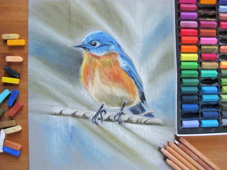 "Eastern bluebird. Soft pastel Mungyo, Canson Mi-Teintes, pastel penсils Faber Castell. 9"" x 12"". #caramelartgallery #softpastel #art #bird #birdsofinstagram #pastel #artwork"